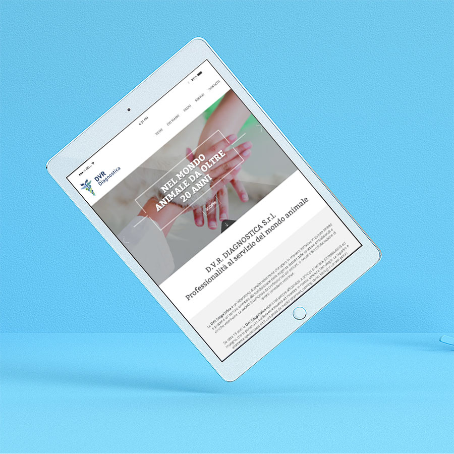 Dvr responsive website